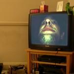 tv freak
