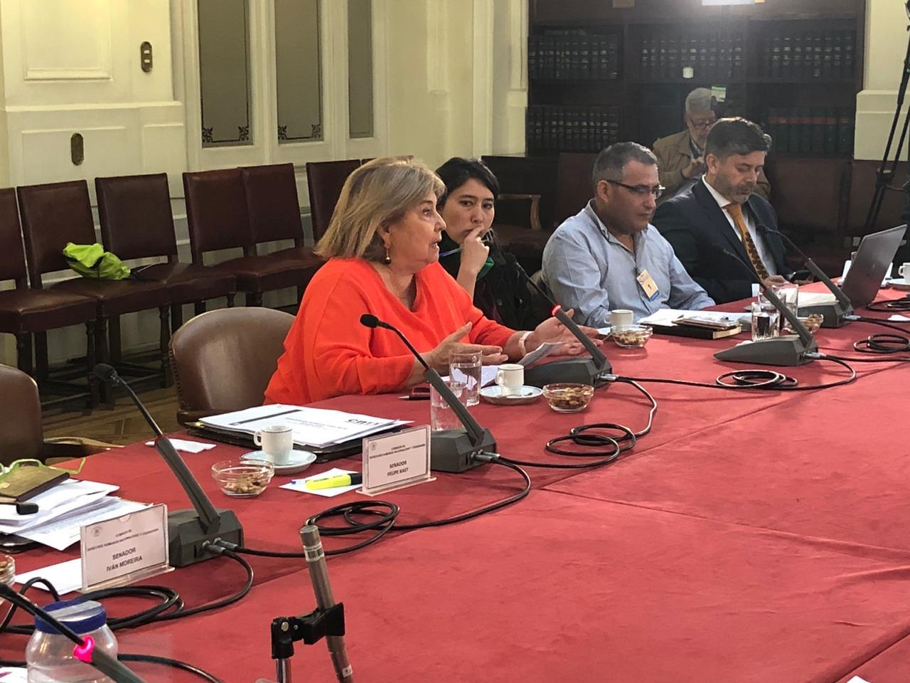 Manuela Gumucio directora de Fucatel durante su intervención en la Comisión de DDHH del Senado